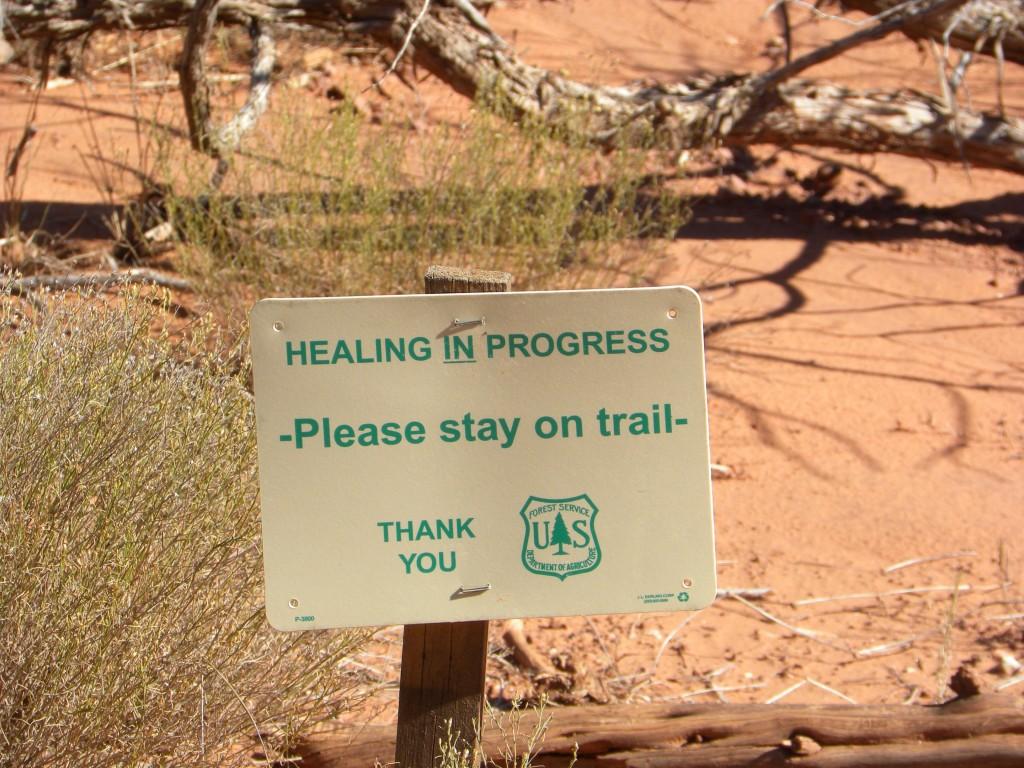 healinginprog